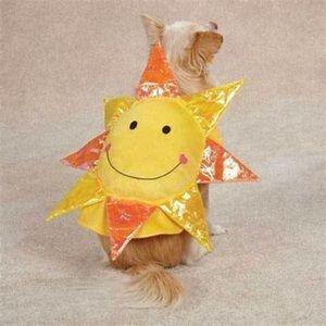 Pet sun costume
